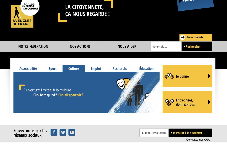 Site internet de la Fédération des Aveugles de France