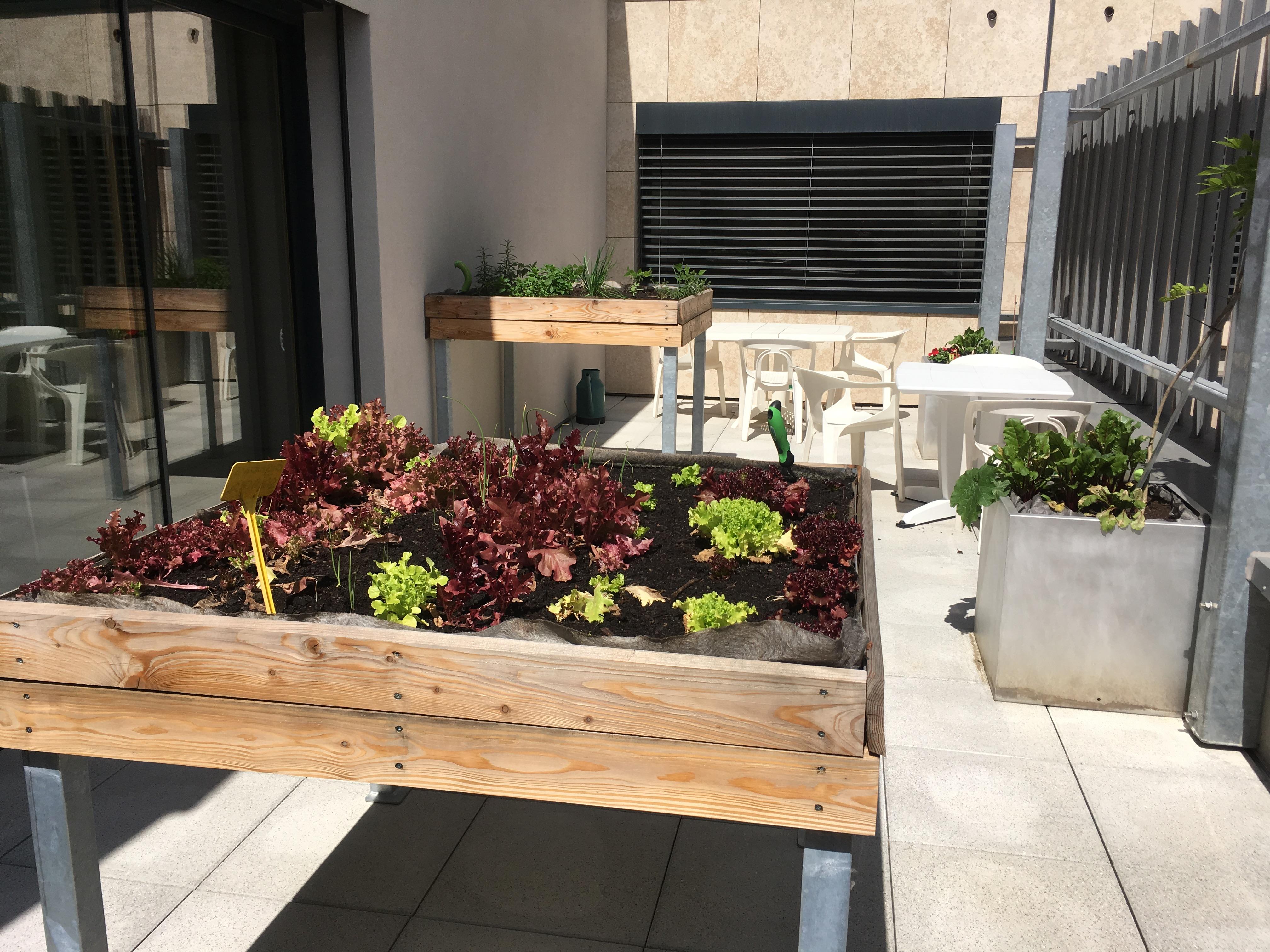 Les Girondines - UVP - Jardin-terrasse adapté