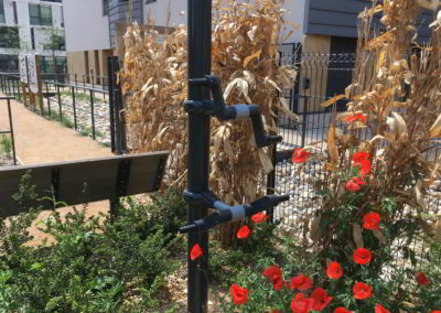 Aménagements et clôture végétalisée