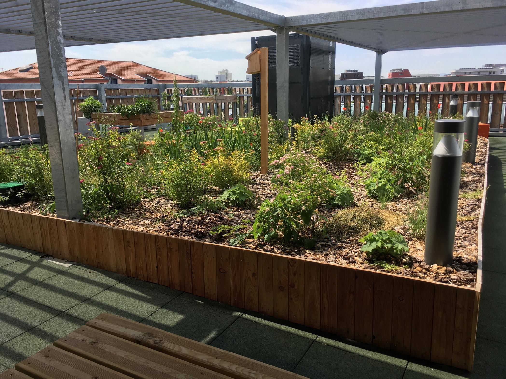 Les Girondines - terrasse végétalisée
