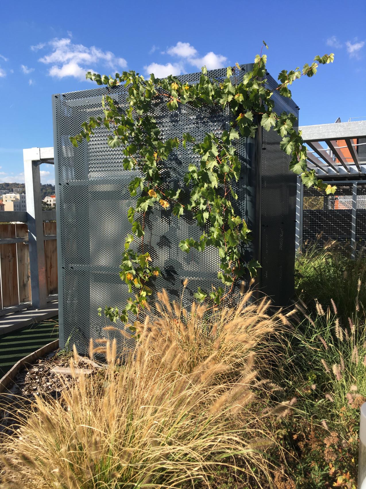 IMG-PRI-Girondines-jardin_terrasse011-G.ATHANASE_10-2017-CC